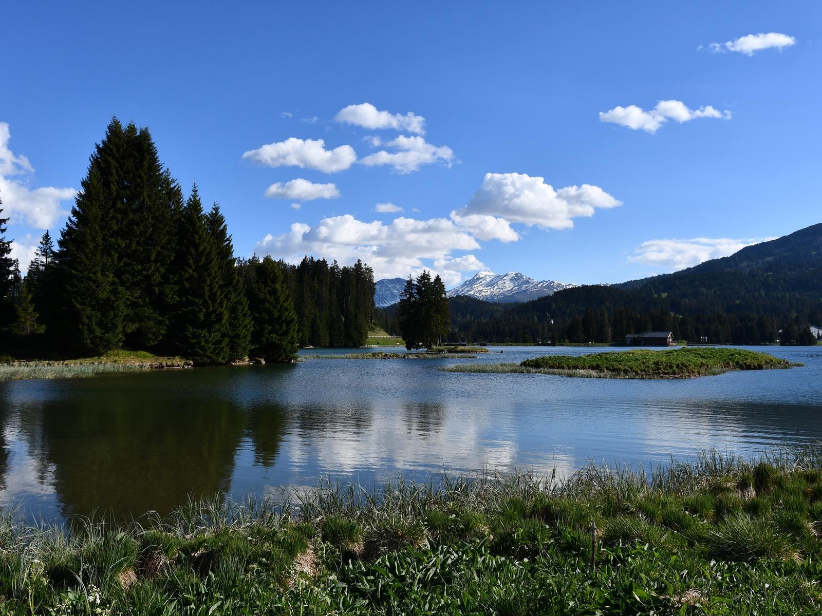небо, облака, озеро, деревья