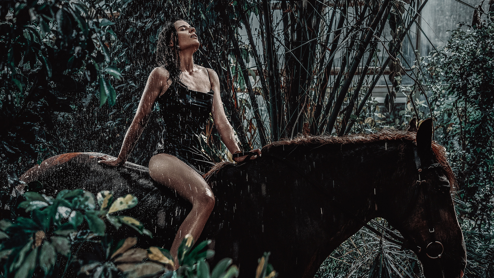 листья, вода, девушка, поза, животное, конь, мокрая, платье, верхом