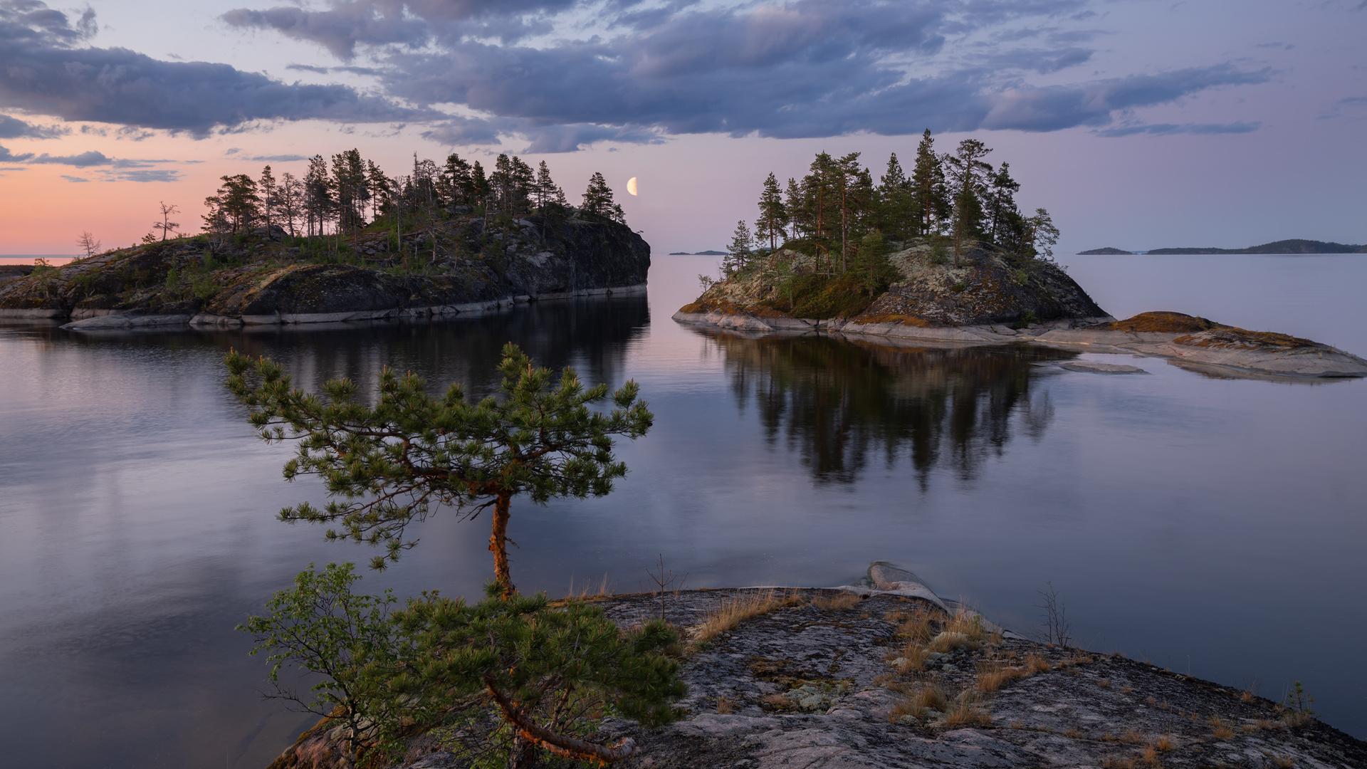 лето, деревья, пейзаж, природа, камни, луна, ладожское озеро, ладога, белая ночь, шхеры