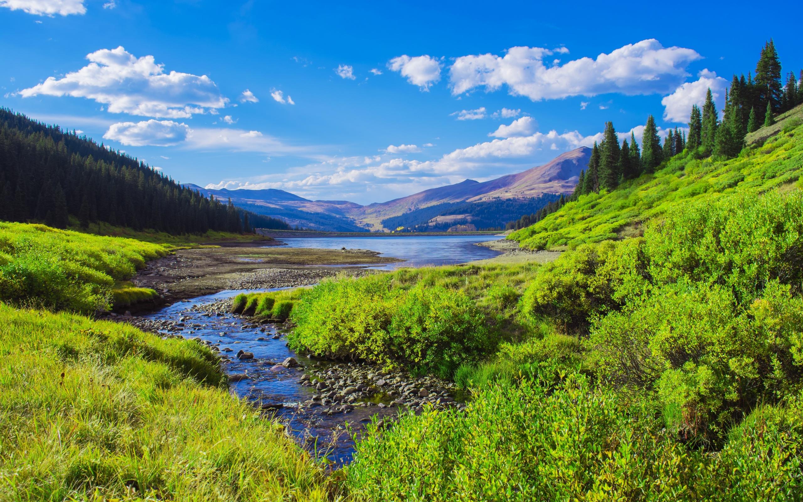 озеро, горы, лес, пейзаж, небо, rocky mountains, colorado, трава, кусты, природа