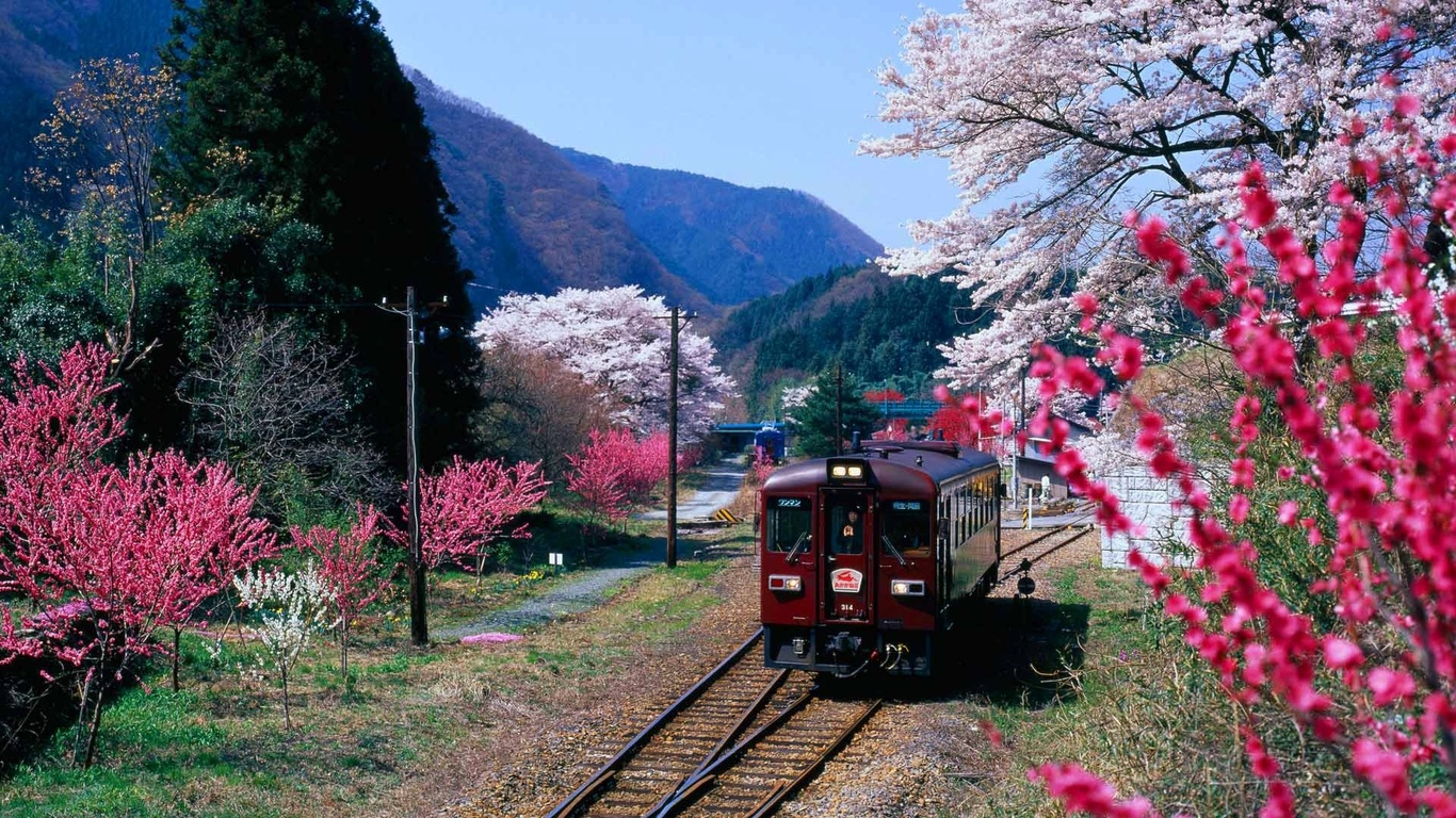 весна, цветение, поезд