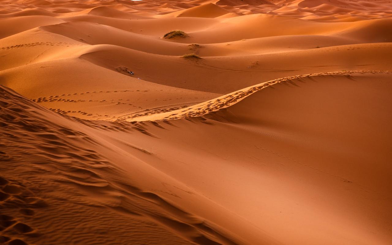 марокко, сахара, пустыня, бархан, песок