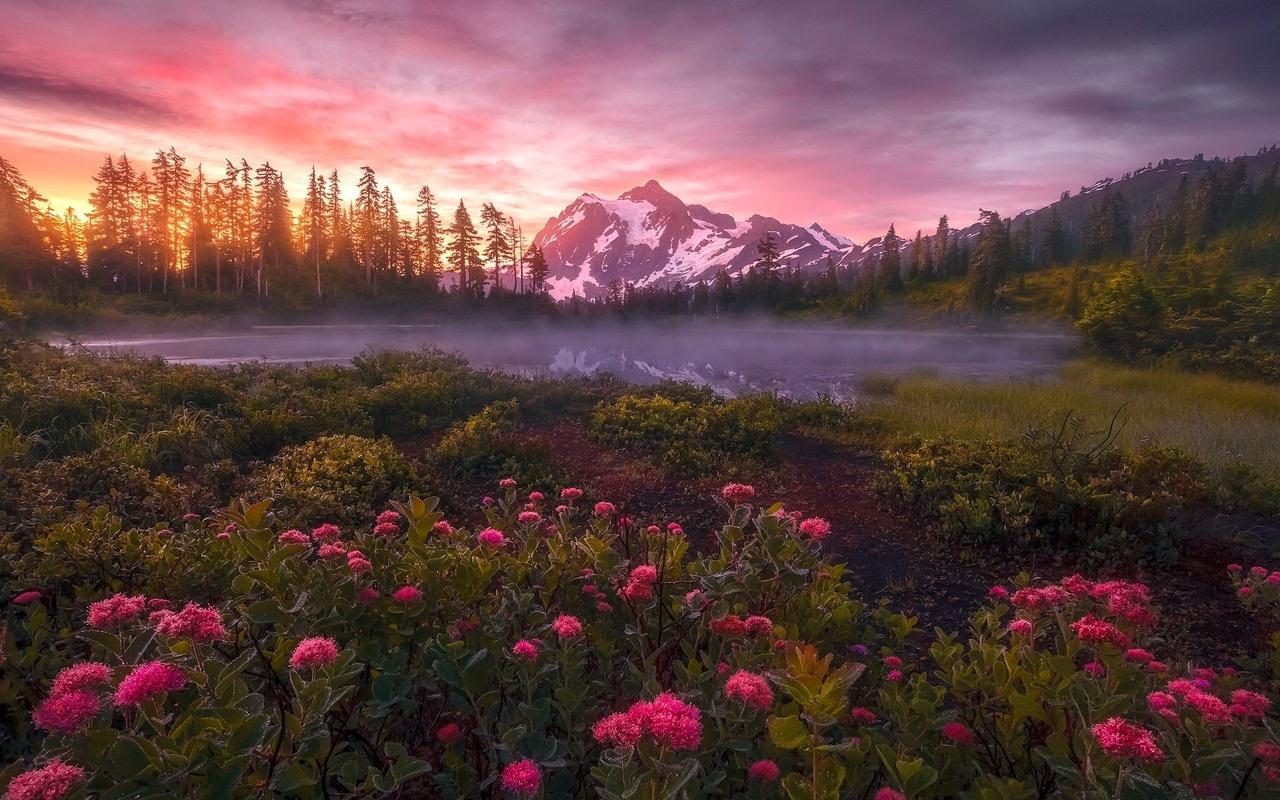 природа, пейзаж, горы, озеро, туман, леса, цветы, закат, рассвет