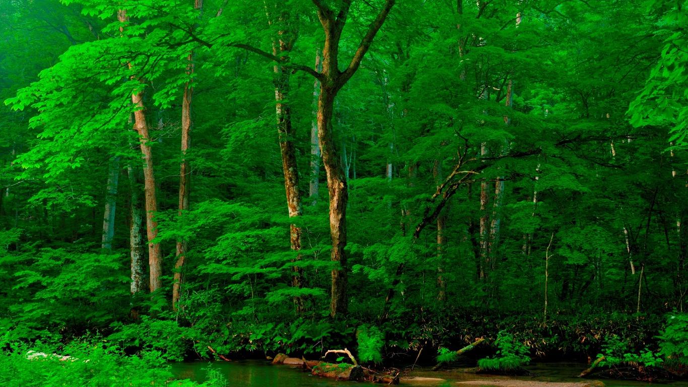 зелёный, фон, австрия, альпы