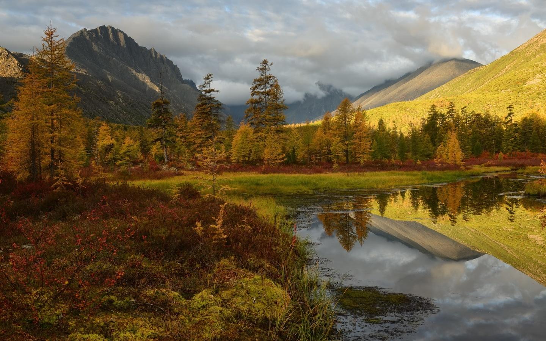 осень, берег, отражение, деревья, горы, растительность, водоем