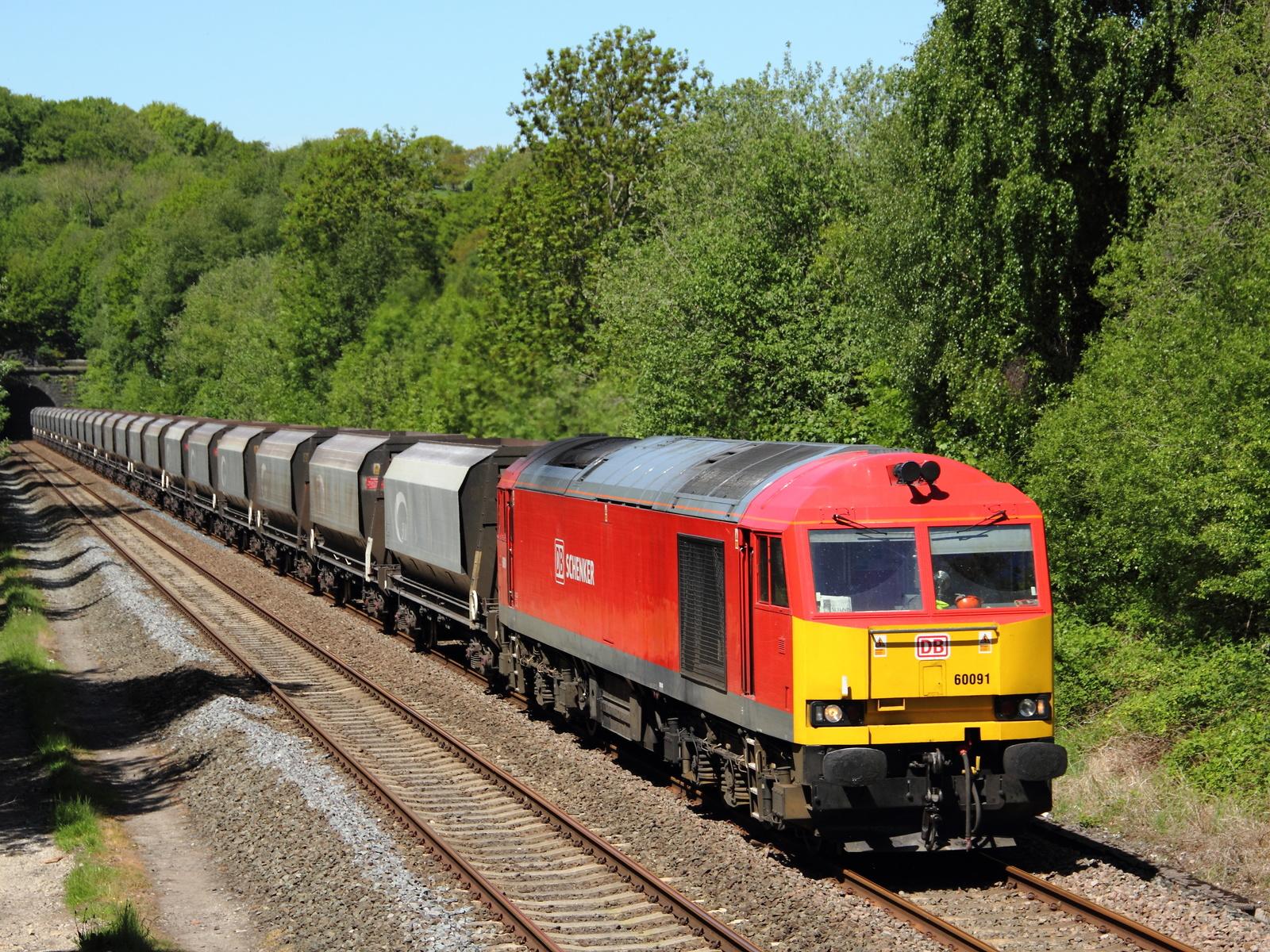 лес, железная дорога, поезд, состав, вагоны