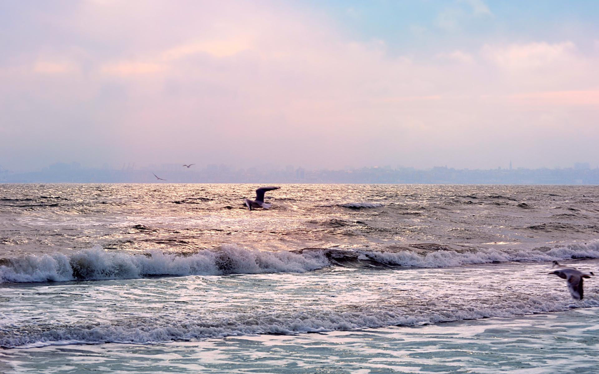 море, прибой, небо