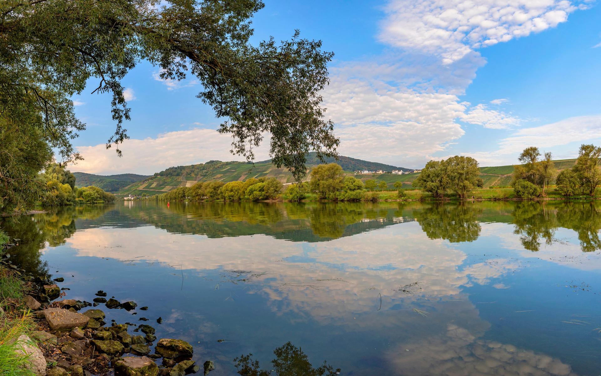 германия, небо, mosel river, деревья, природа