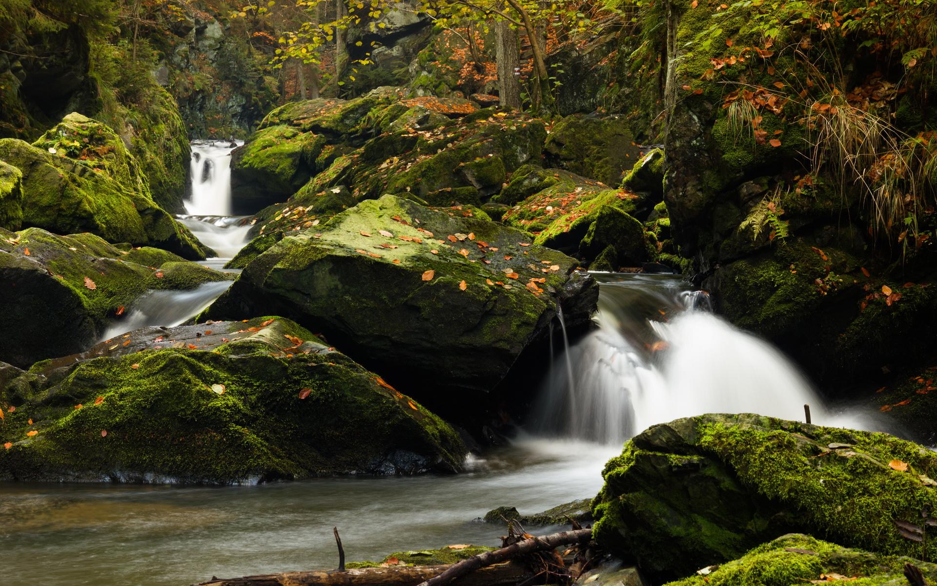 водопад, камни, мох, ветки, вода