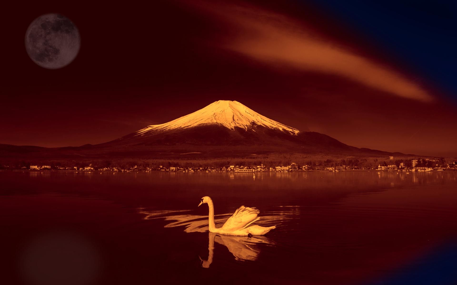 фудзияма, лебедь, Япония