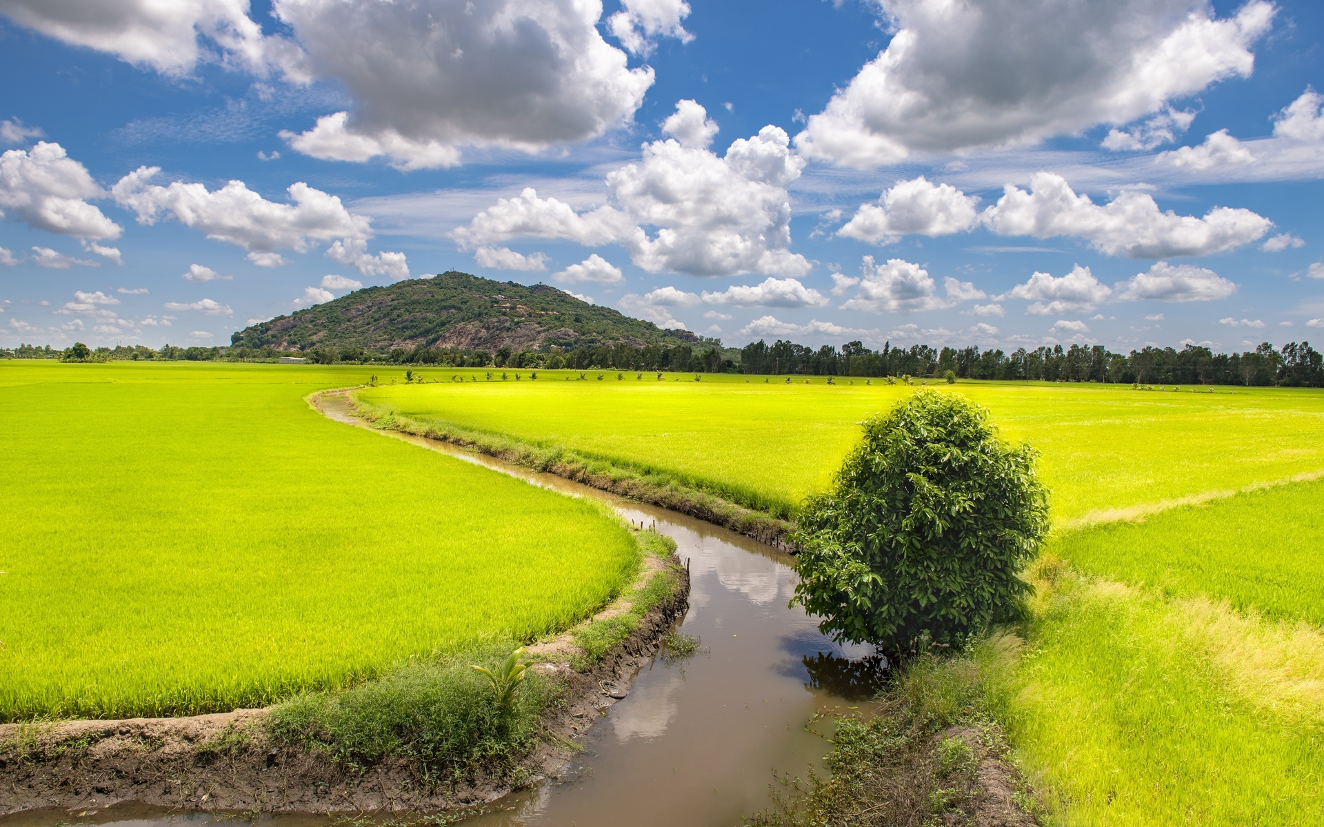 вьетнам, поля, trung khanh, district, cao bang, province, водный канал, облака, природа