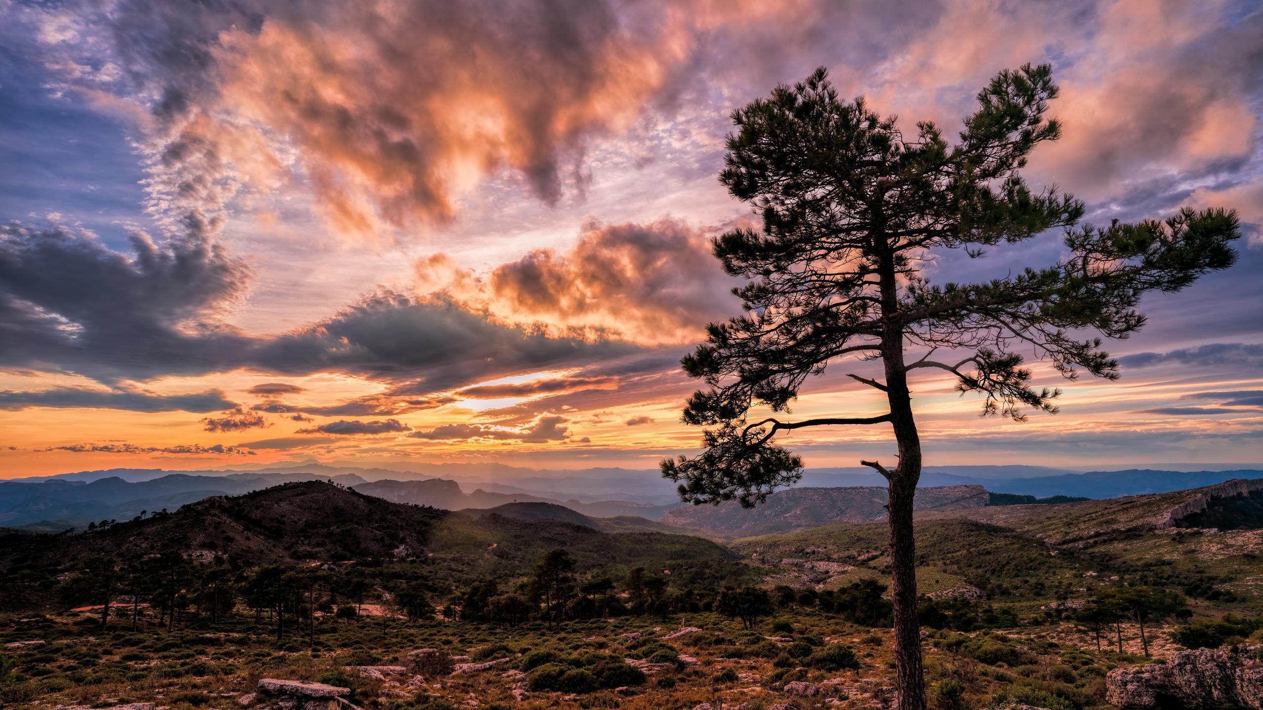испания, горы, вечер, закат, небо, catalonia, облака, деревья, природа