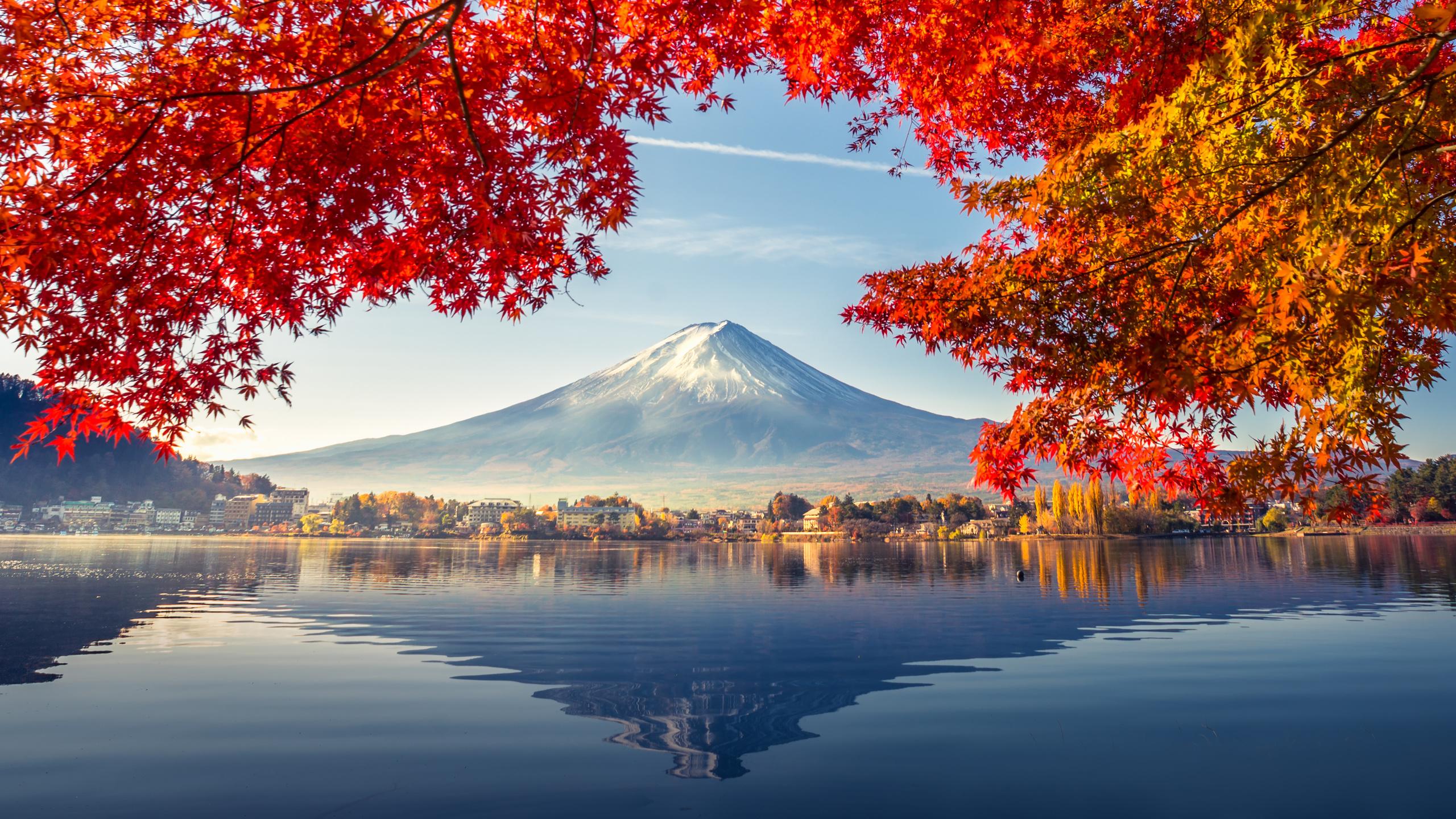 природа, осень, гора фудзияма, фудзияма