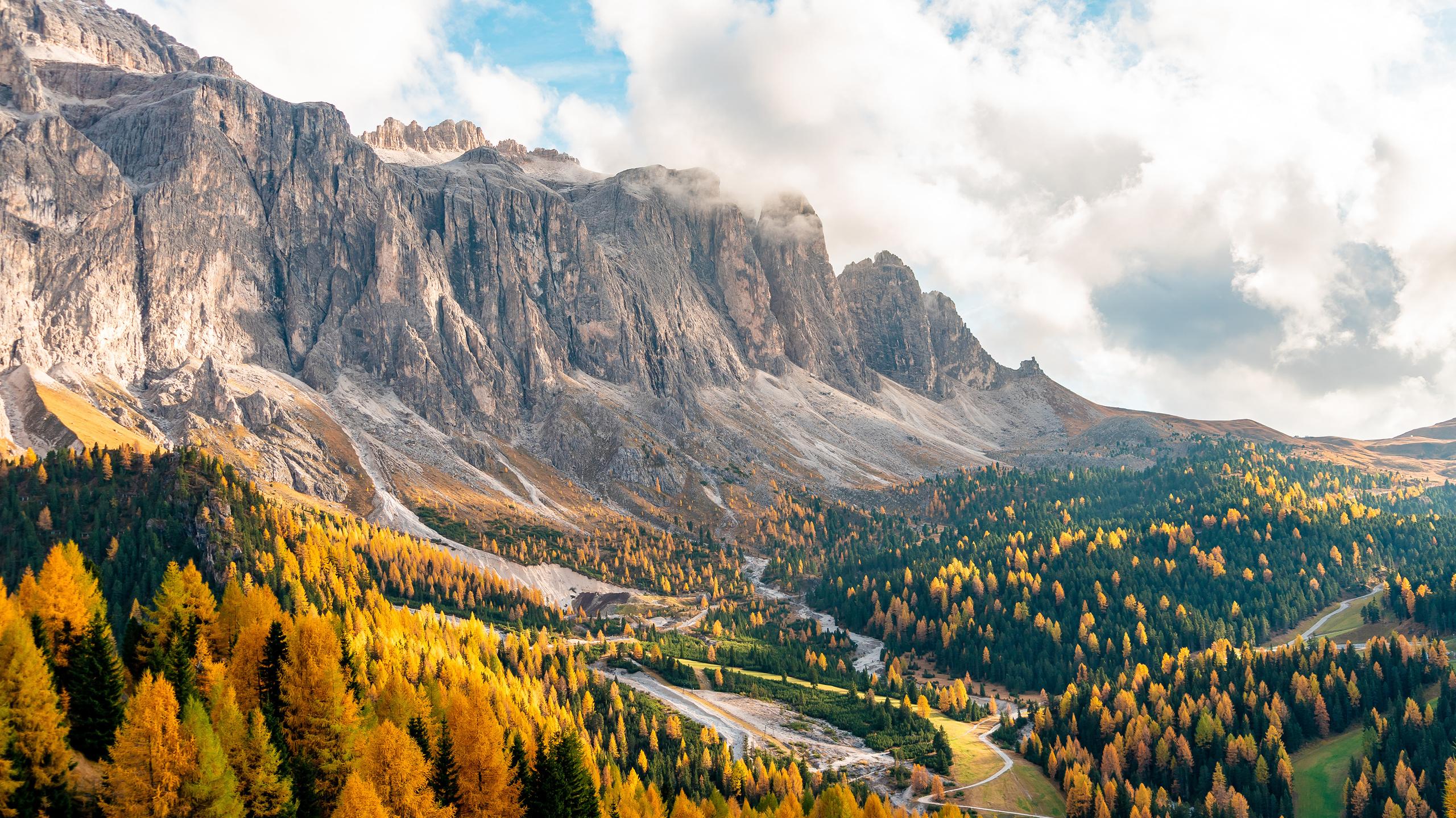 осень, горы, италия, лес, passo gardena, south tyrol, dolomite, alps, природа