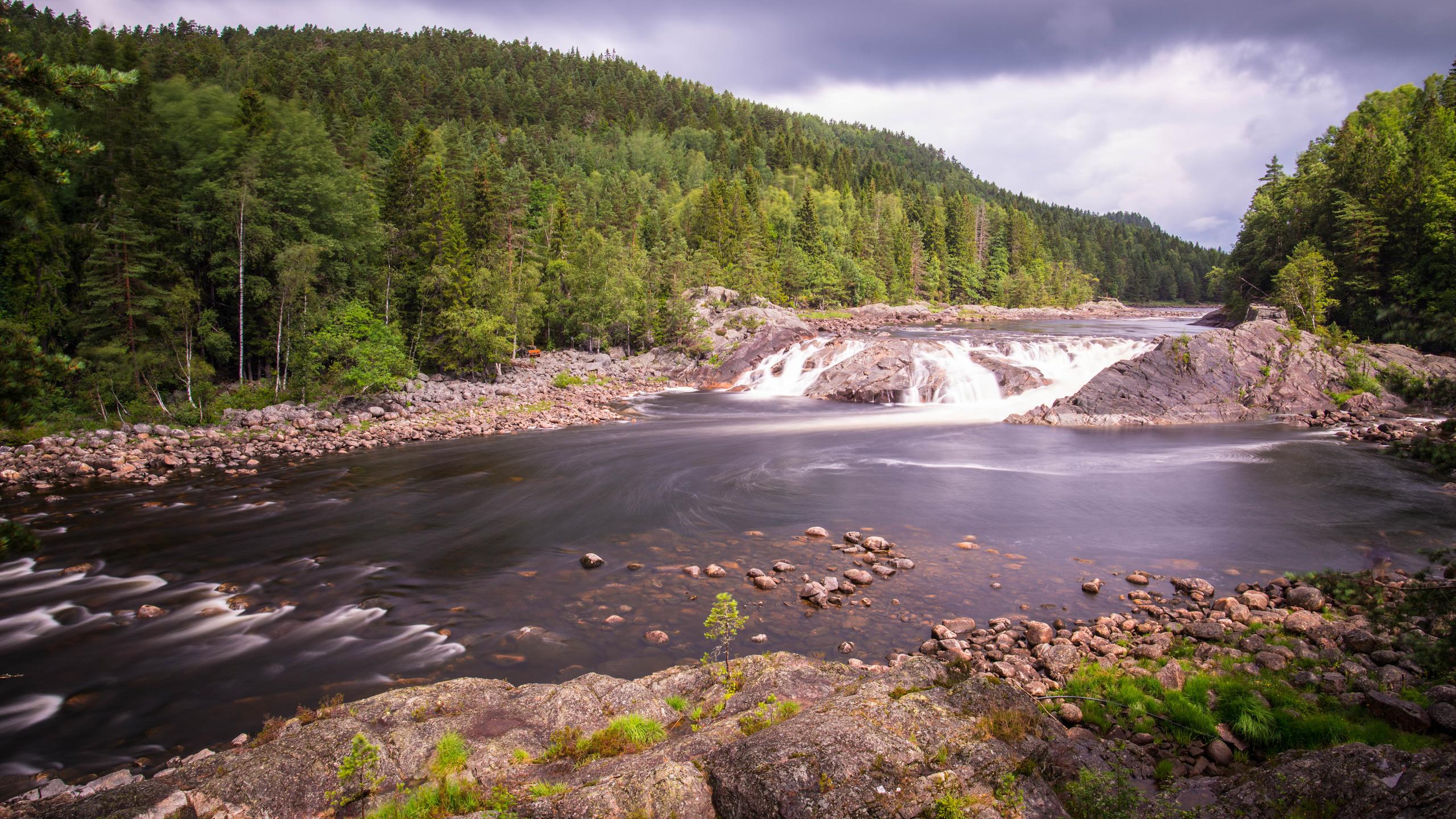 река, лес, деревья, камни, поток, небо