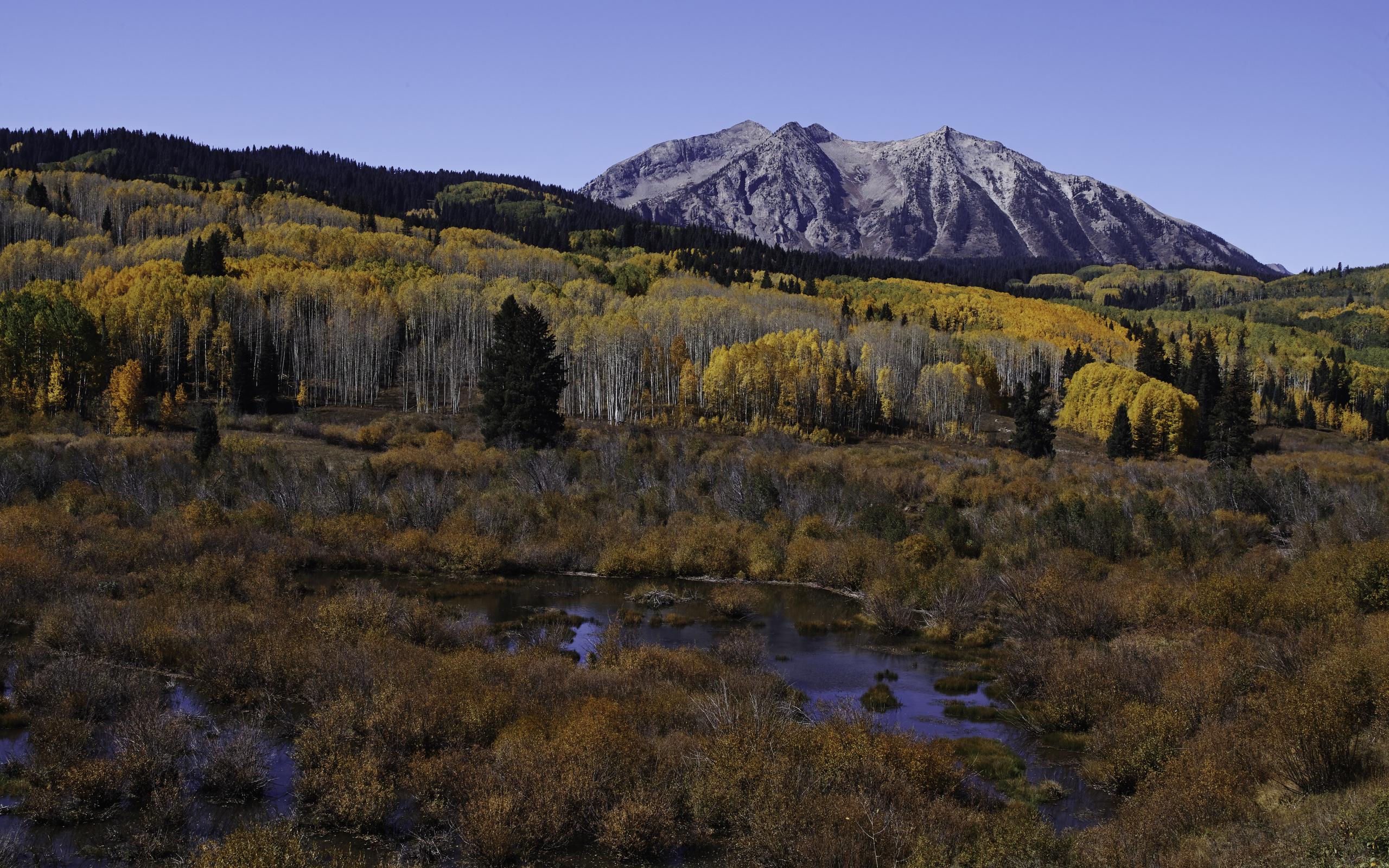 горы, деревья, лес, осень, вершина