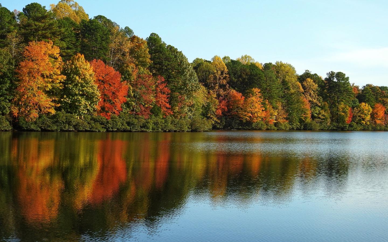 река, деревья, краски
