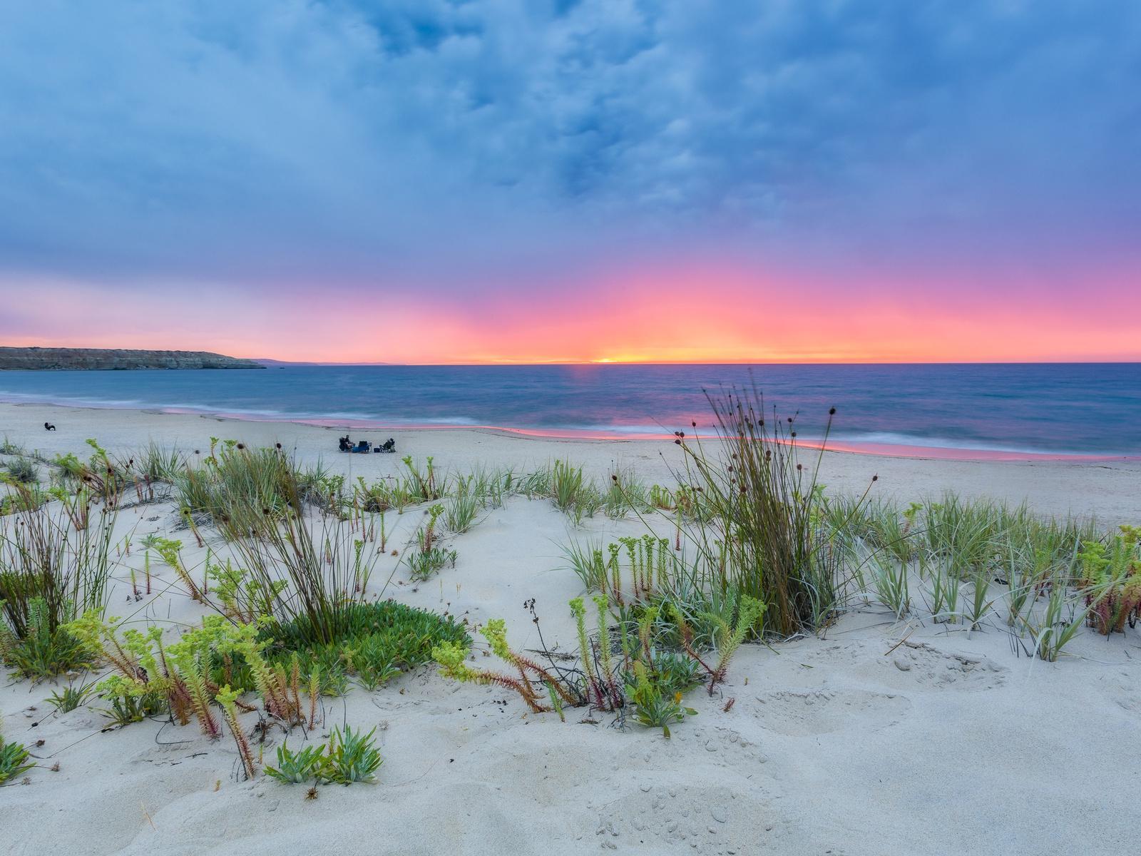 марлин бич, море, закат, берег, пляж, песок, растения, небо, природа, пейзаж