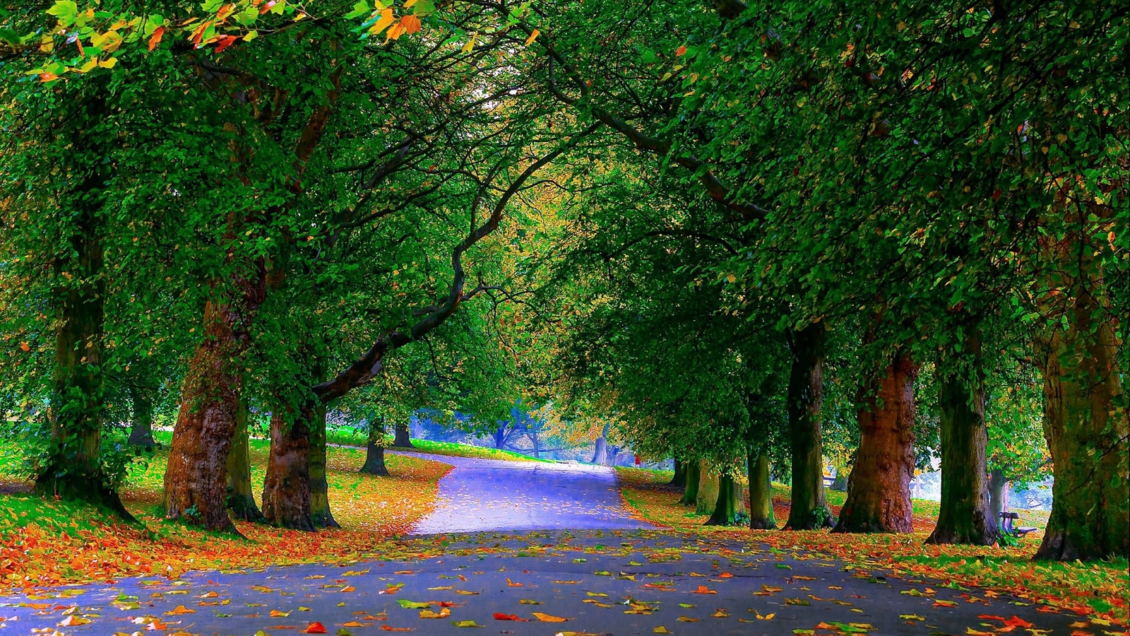 природа обои, пейзаж, алекс159 растягивает обоины как свое очко