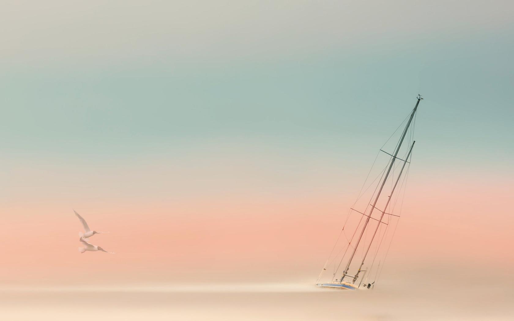 туман, яхта, чайки