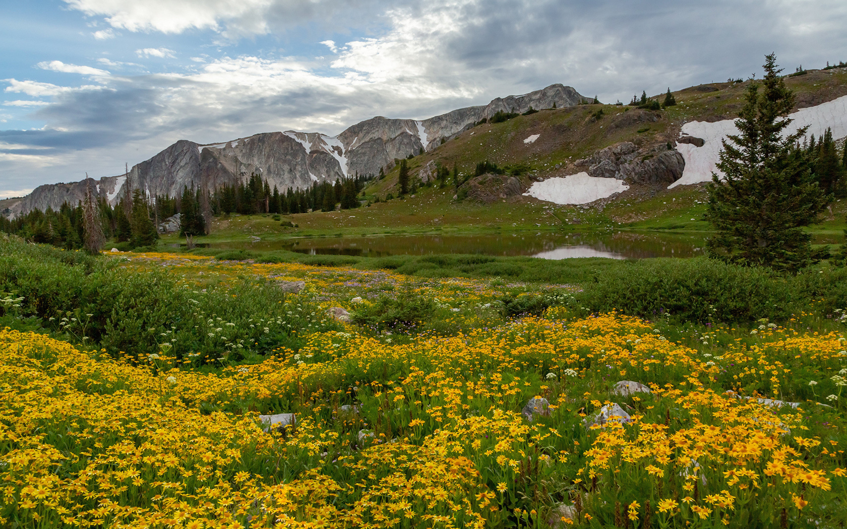 горы, луг, medicine, bow-routt, national, forests, облака, природа