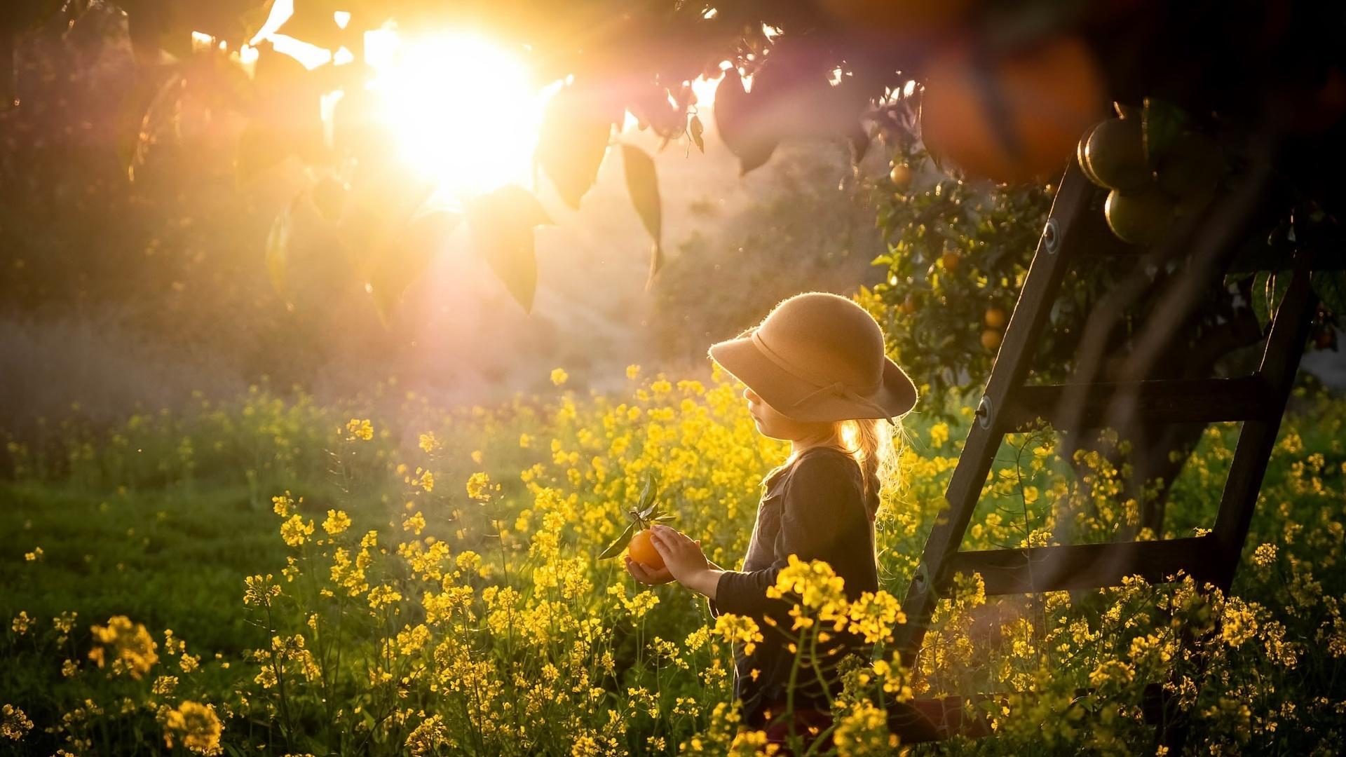 ребёнок, девочка, шляпка, природа, сад, деревья, травы, мандарины, солнце, свет