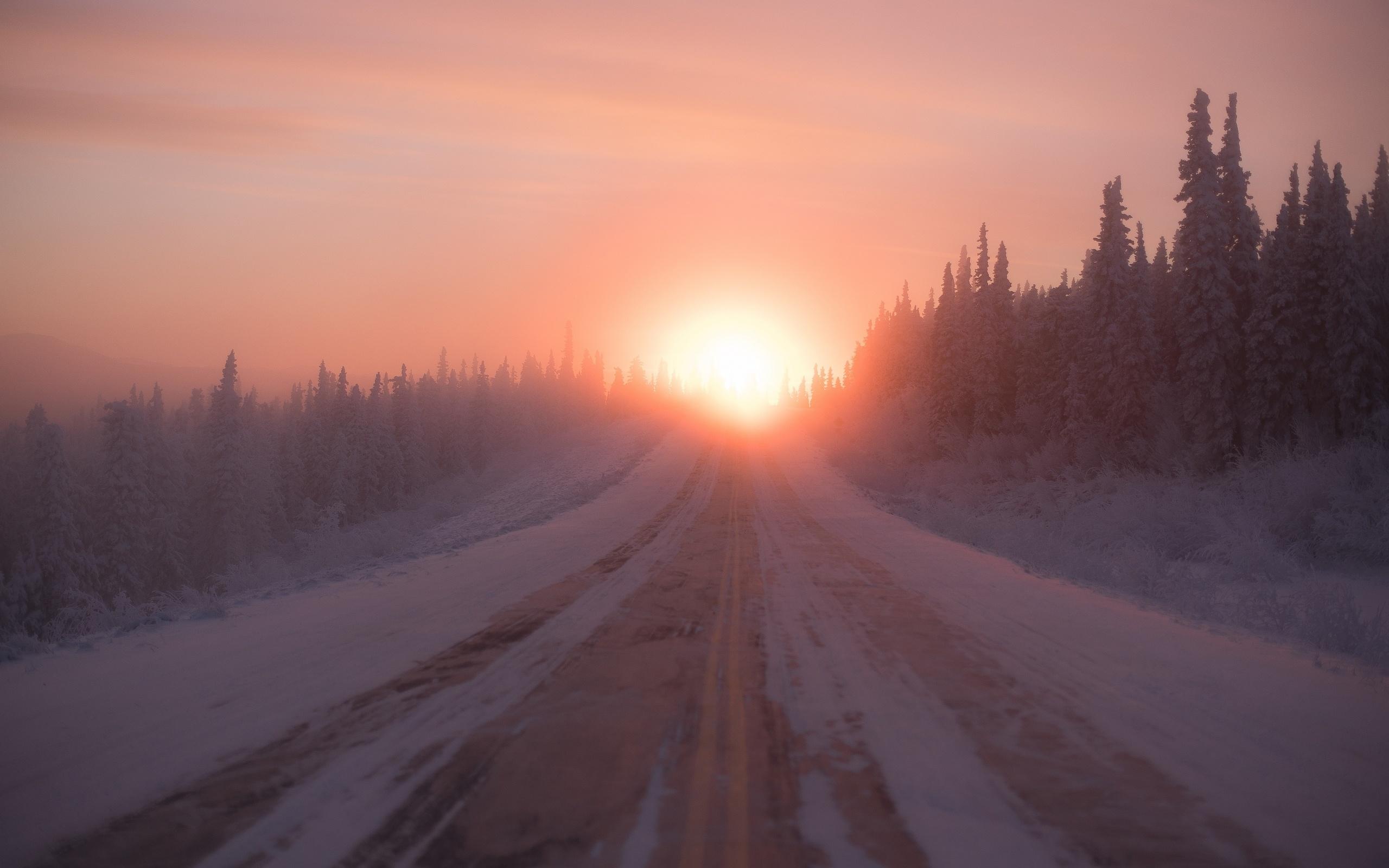 зима, снег, лес