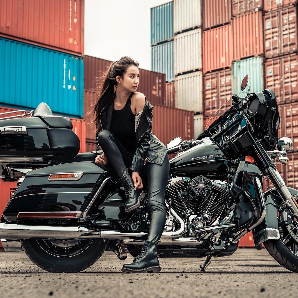 harley davidson, мотоцикл, байк, брюнетка, азиатка