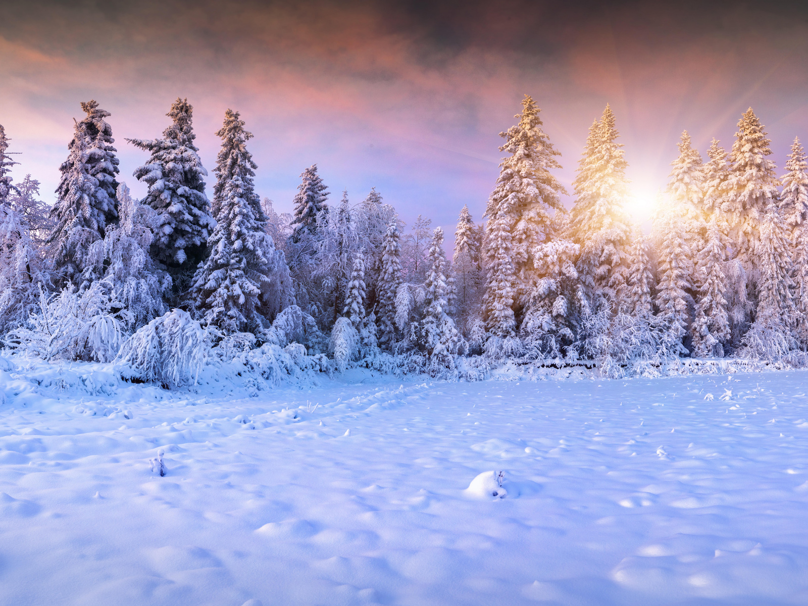 зима, снег, лес, сугробы