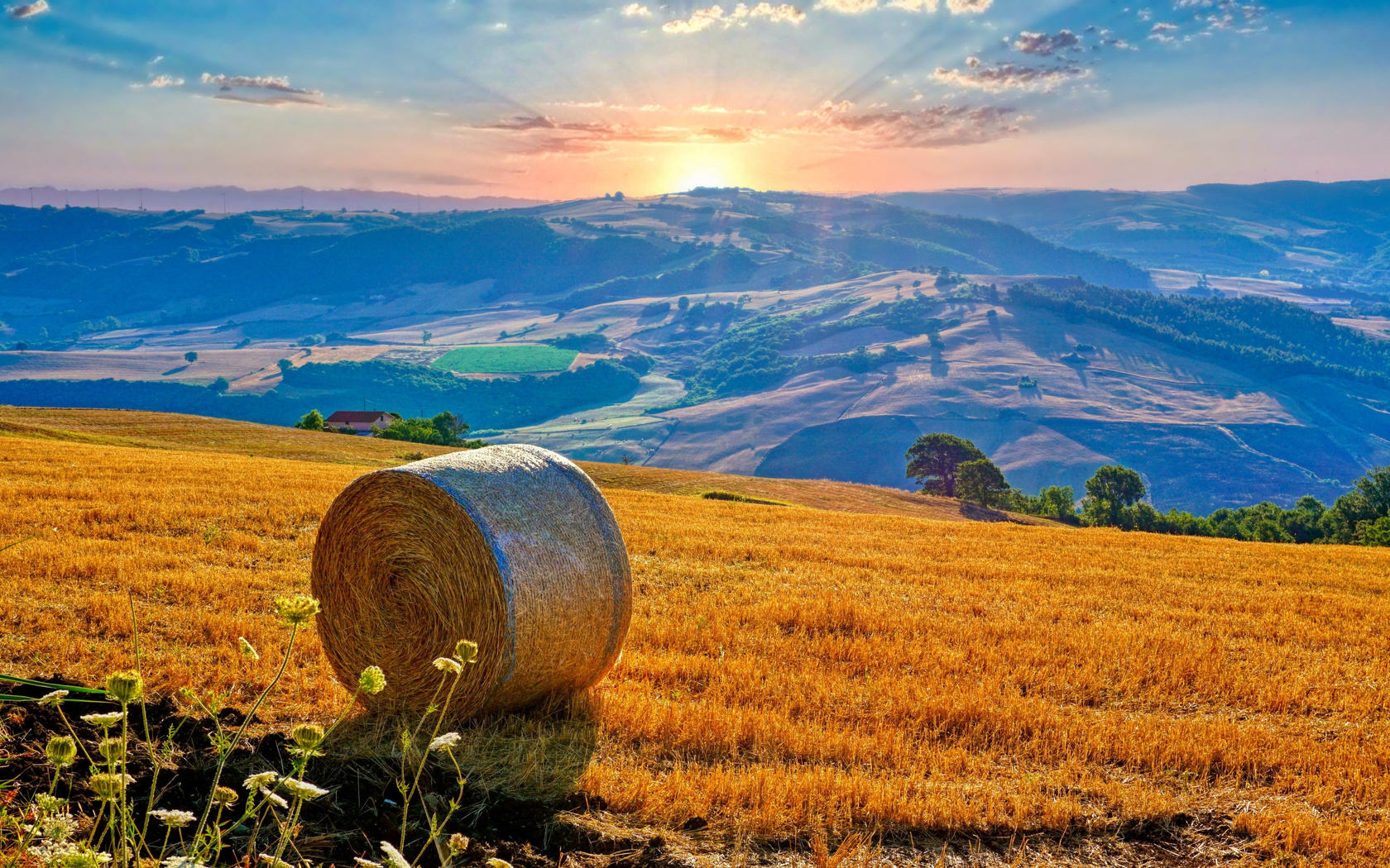 италия, поля, пейзаж, рассвет, закат, campania, солома, природа