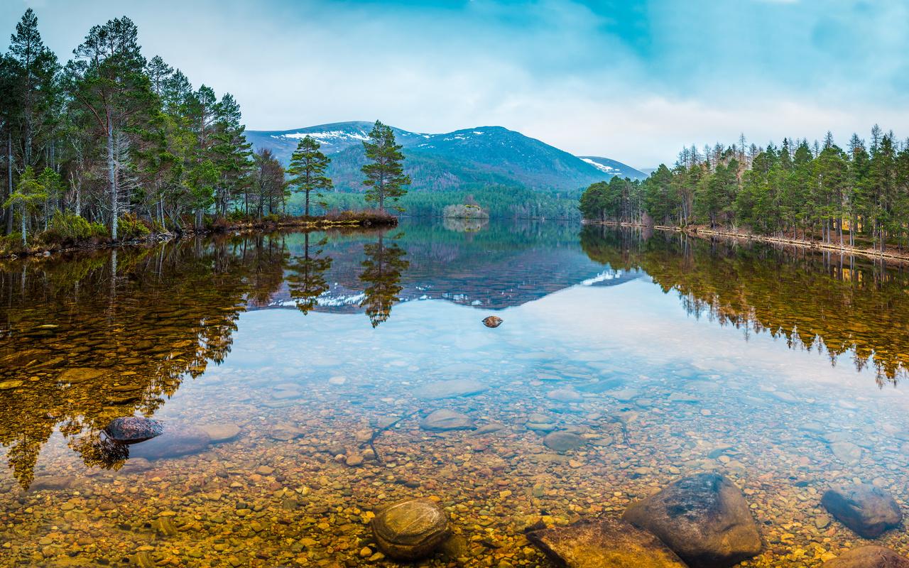 россия, лес, озеро, камни, karelia, природа