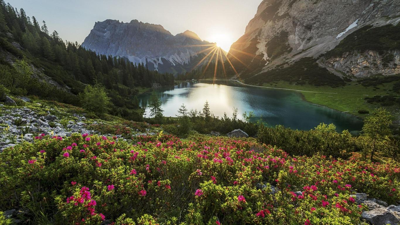 горы, озеро, цветы