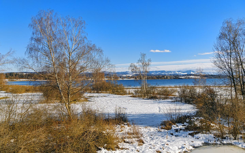 река, берег, снег, зима, пейзаж