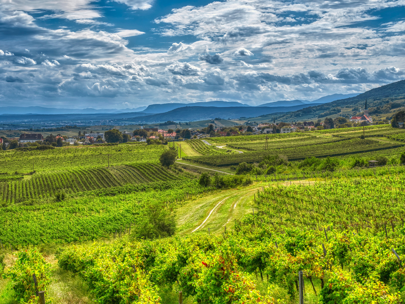 австрия, горы, виноградник, gumpoldskirchen, облака, альпы, hdr, природа