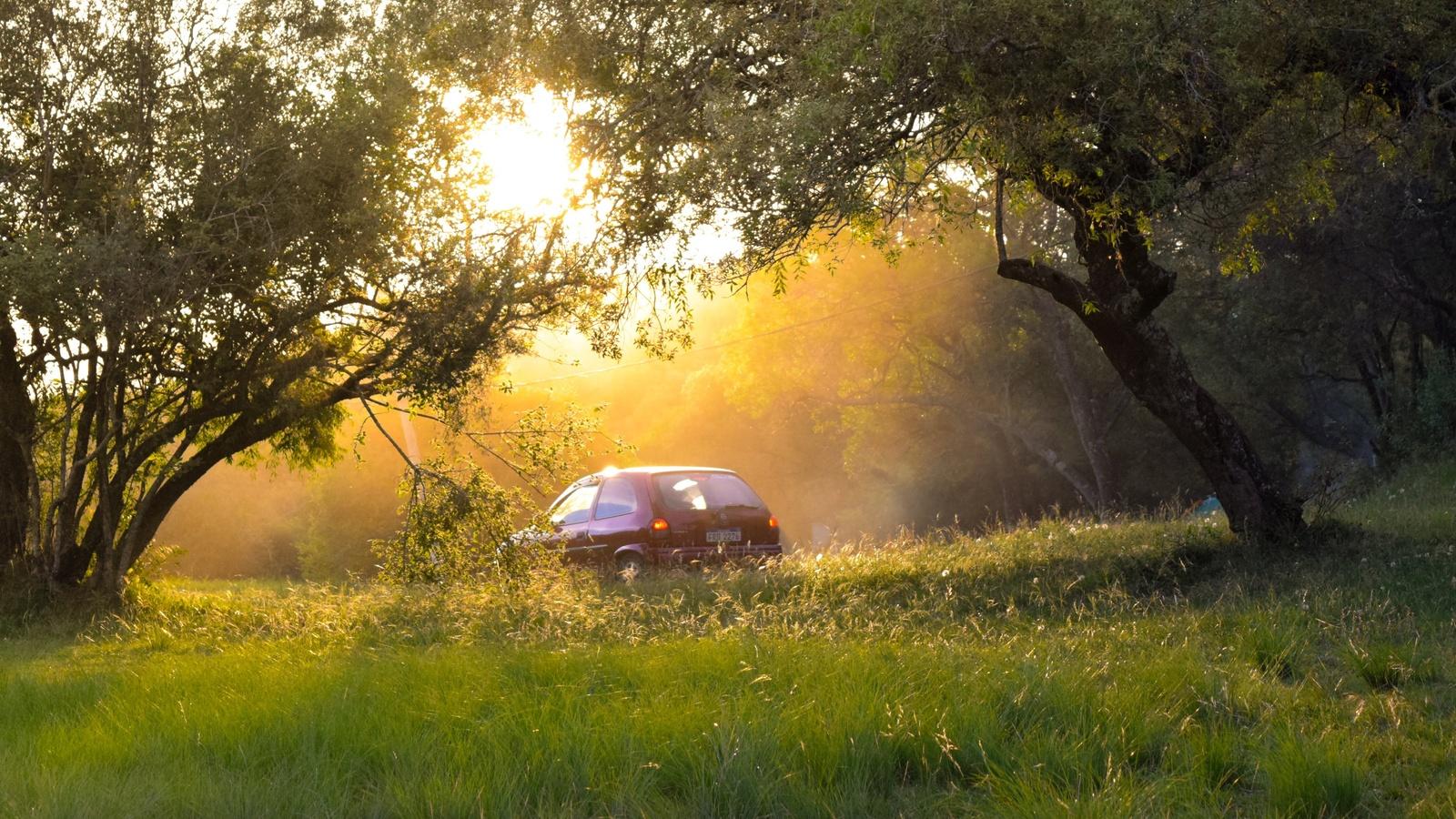 солнце, природа, авто