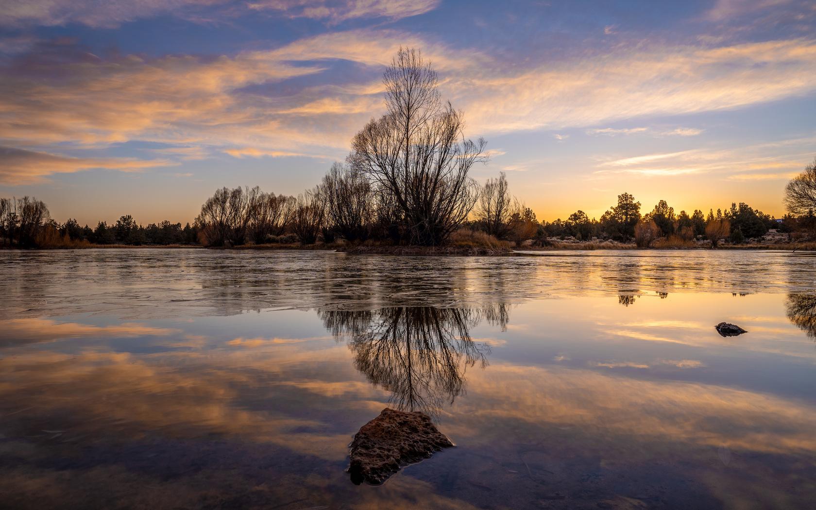 озеро, дерево, отражение, вода, сумерки, природа