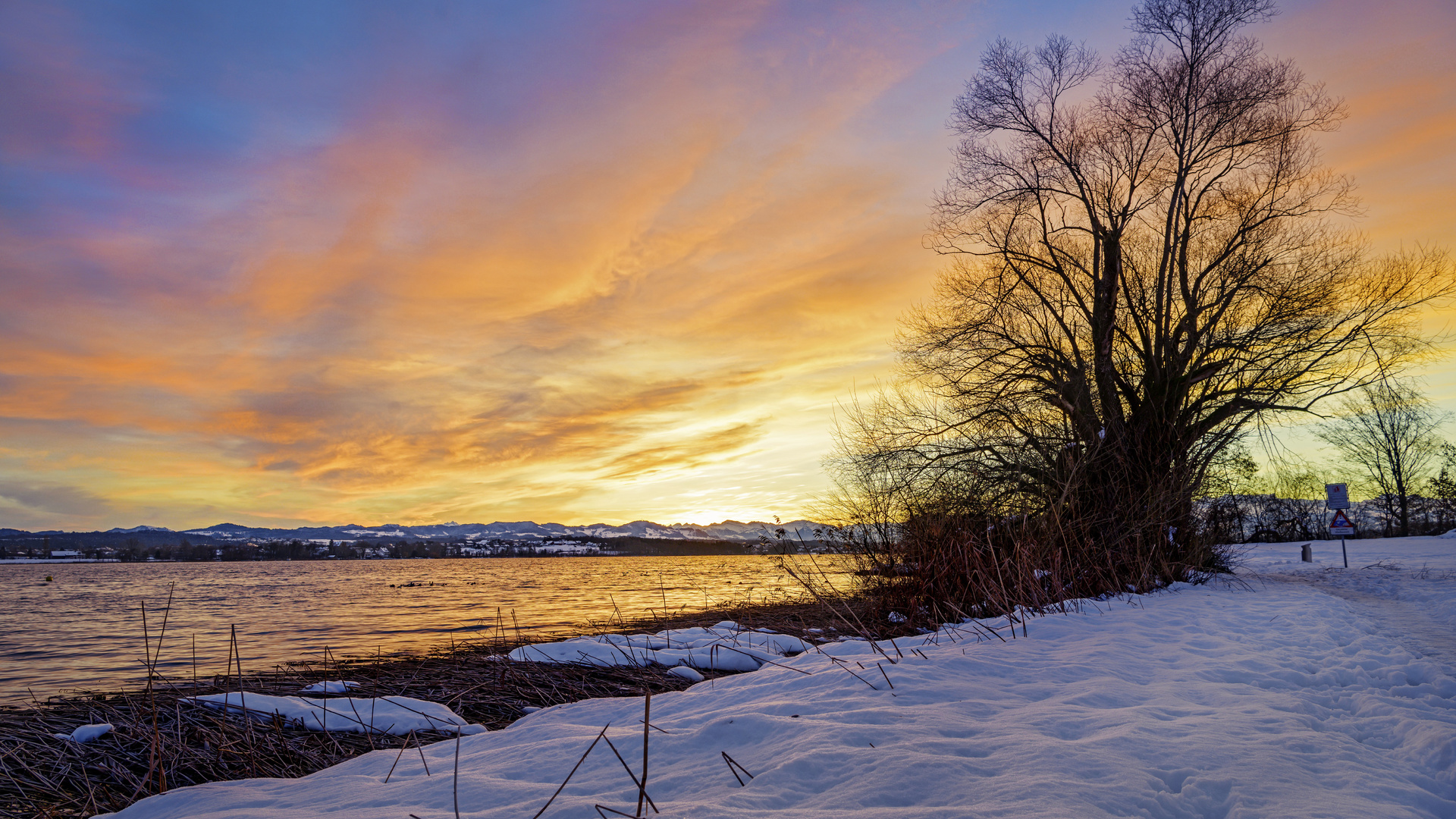 озеро, закат, дерево, снег, зима, пейзаж