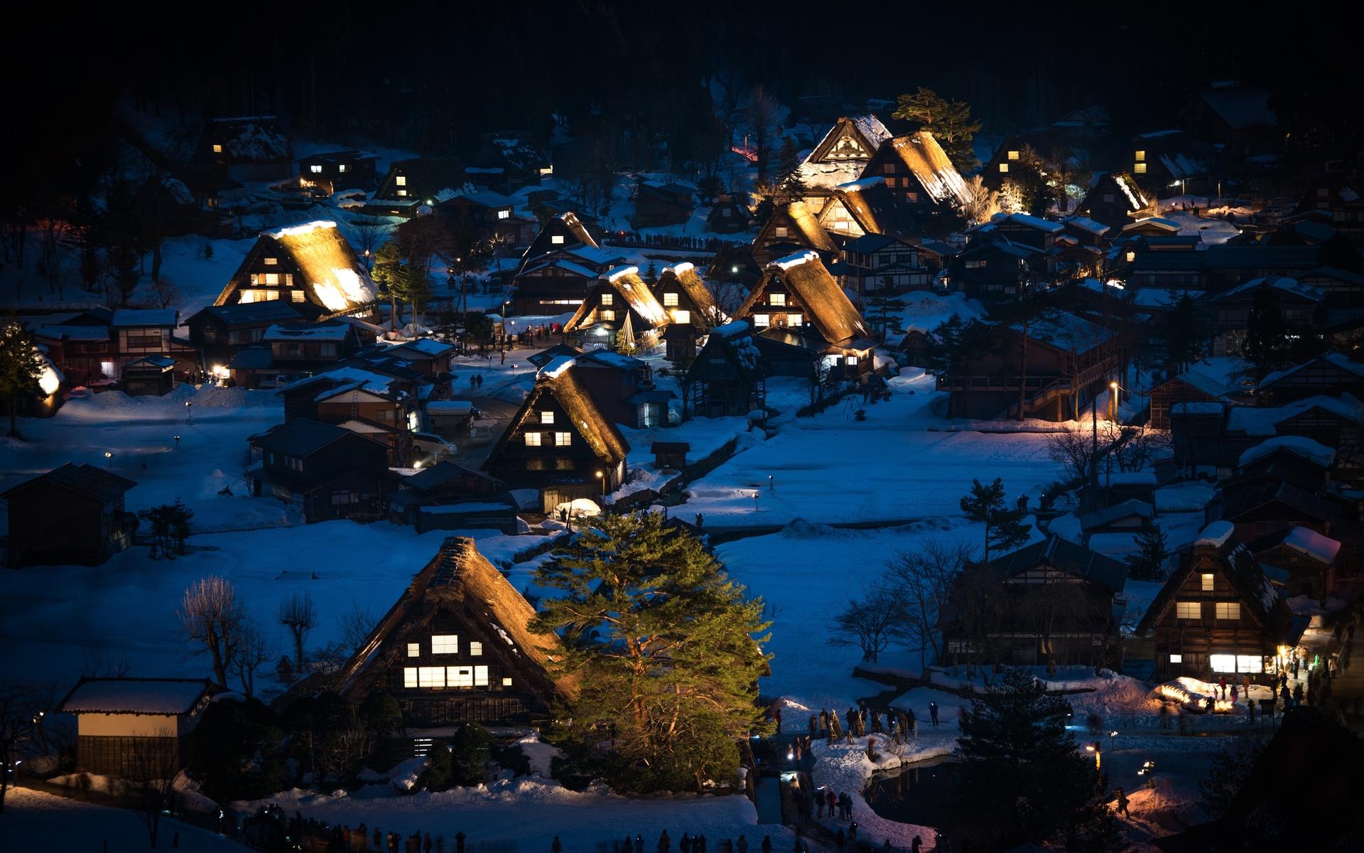 Япония, дома, shirakawa-go, honshu, деревня, ночь, деревья