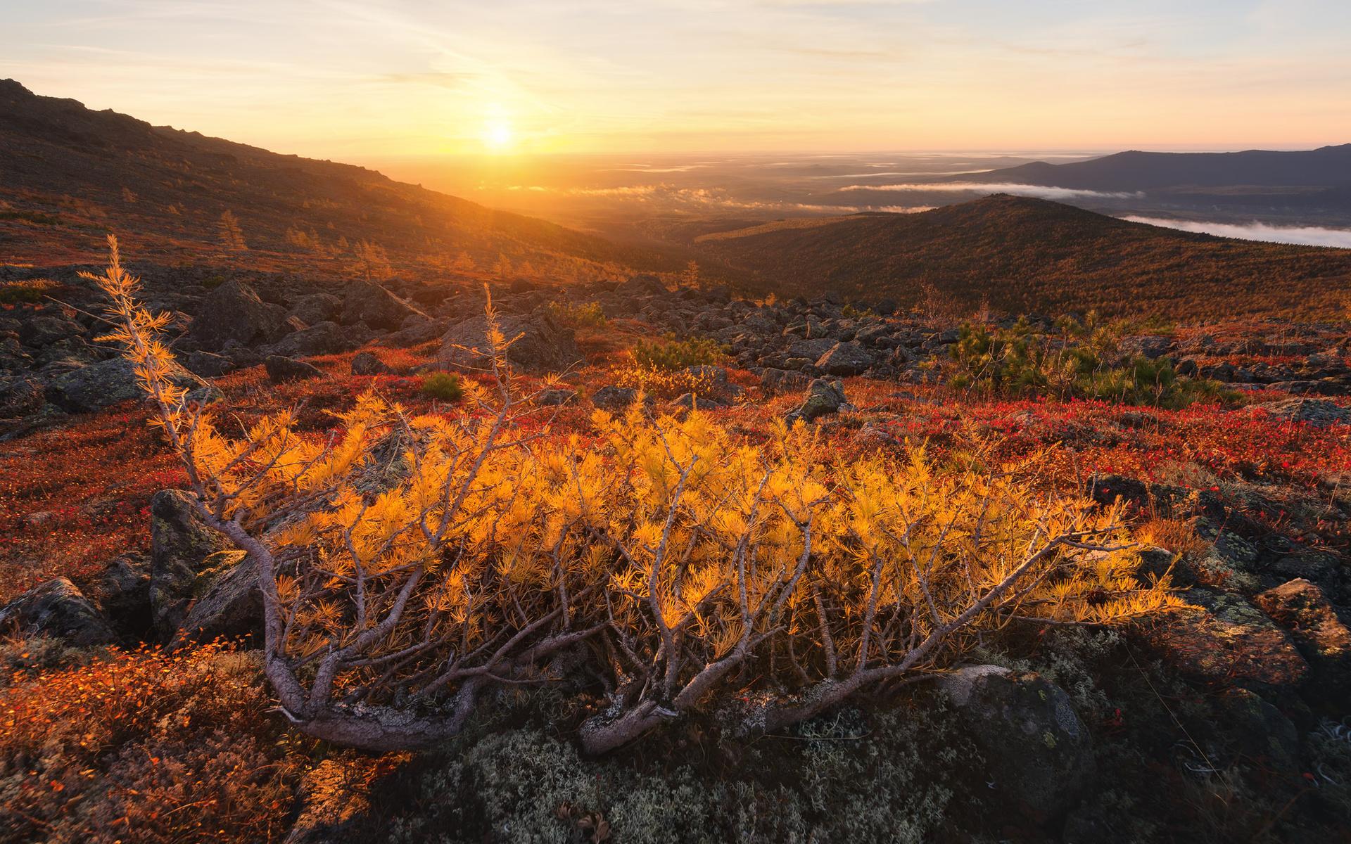 осень, горы, пейзаж, михаил туркеев