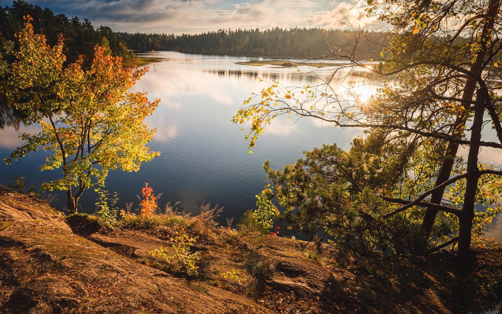 осень, озеро, лес, карелия