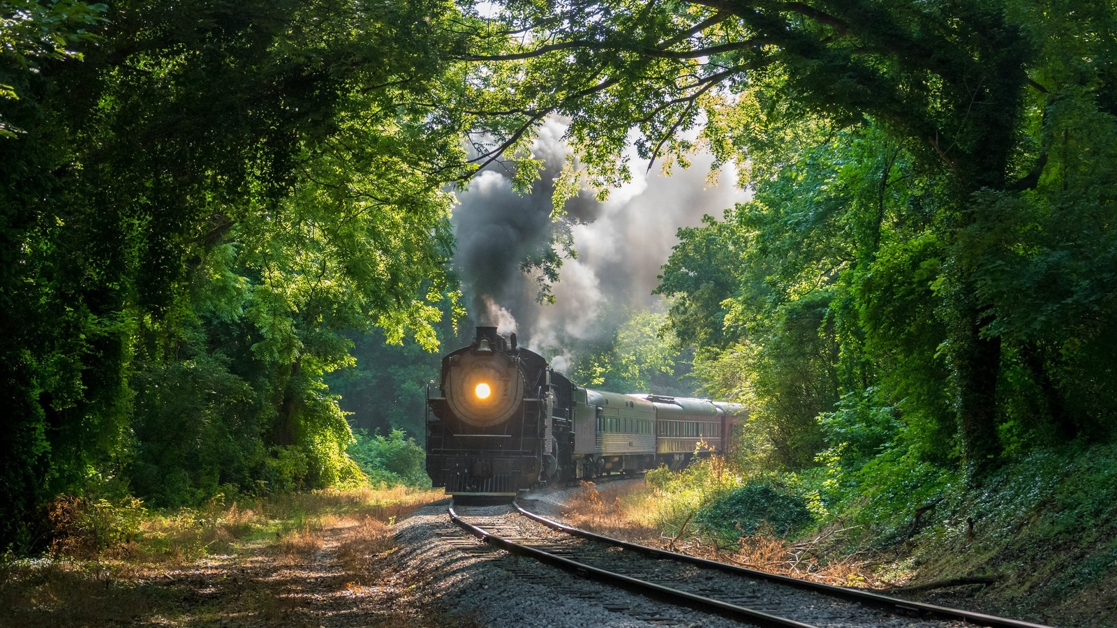 лес, железная дорога, поезд, паровоз, дым