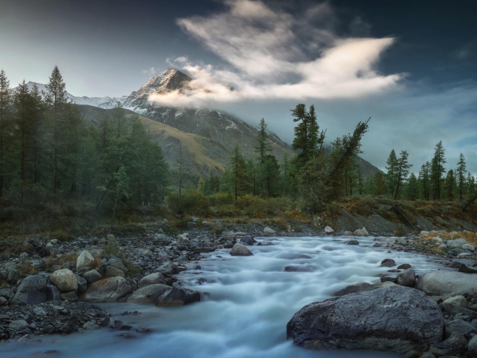 речка, горы, пейзаж, николай шевченко