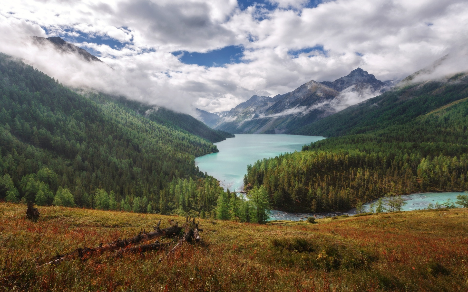 озеро, горы, лес, николай шевченко