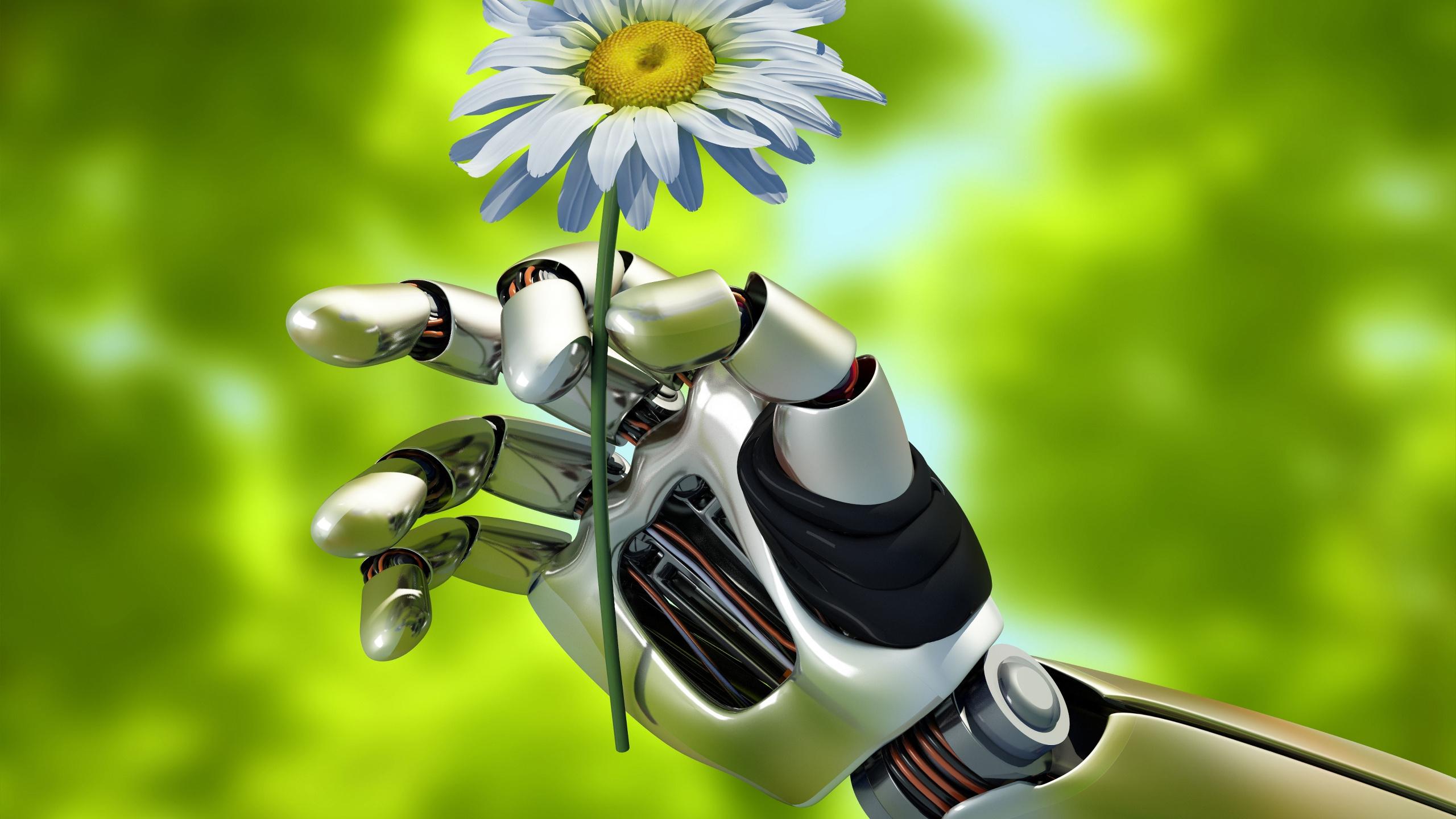 цветок, ромашка, лето, природа, механизм, робот, рука, размытие