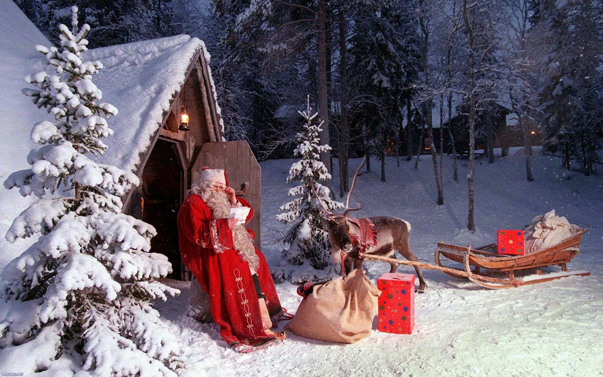 Зима олень разрешение картинки 1920x1200