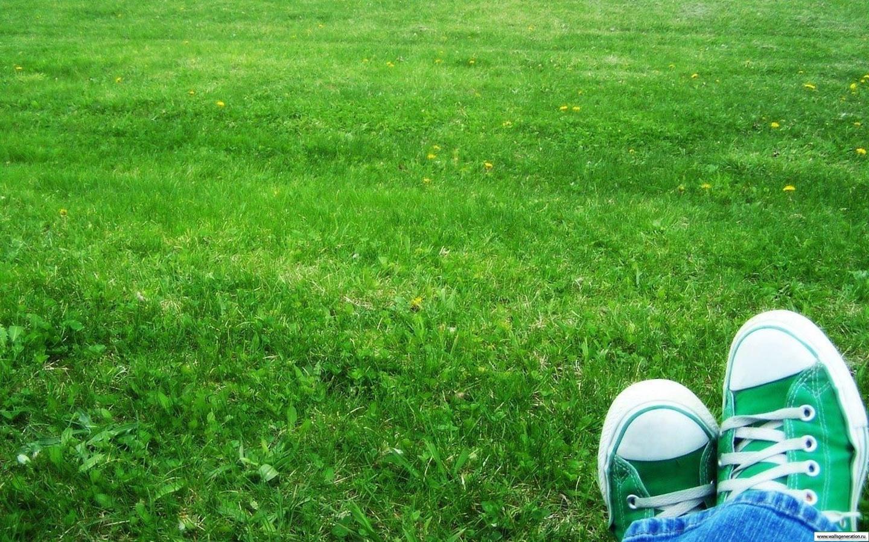 Ru. Для того чтобы скачать картинку 12669 - зеленый, кеды, трава…