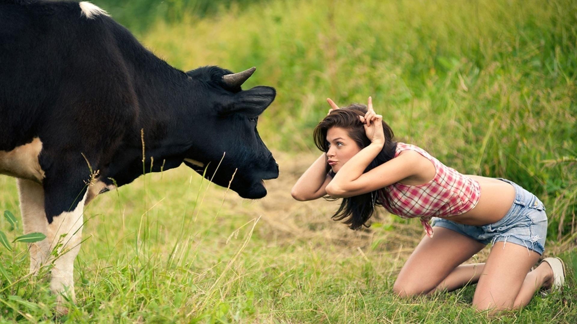 Wallpaper girl sex cow hardcore scene
