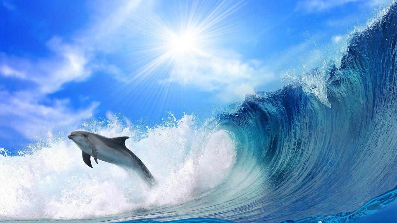 картинки про моря россии