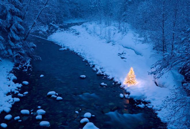 Новогодняя зимний лес ёлка гирлянды