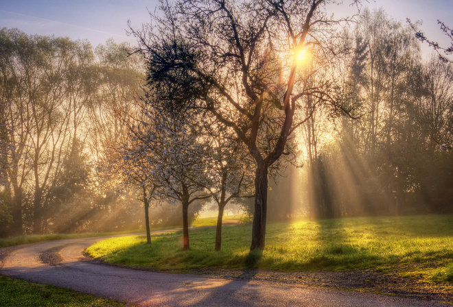 Good Morning Friends In Korean : Обои све лучи дорога Природа весна солнце на рабочий